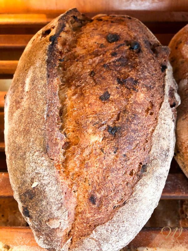 Wild Wheat Hazelnut Currant bread